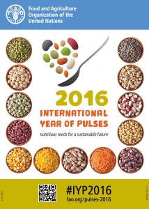 Das Jahr der Hülsenfrüchte - 2016