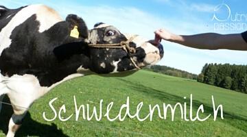 Schwedenmilch (Filmjölk) – eine Wohltat für den Darm