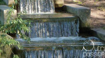 Ist Leitungswasser bedenkenlos trinkbar?