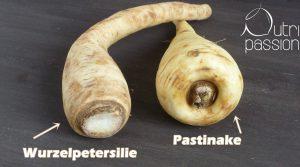 wurzel-petersilie-pastinake-vergleich