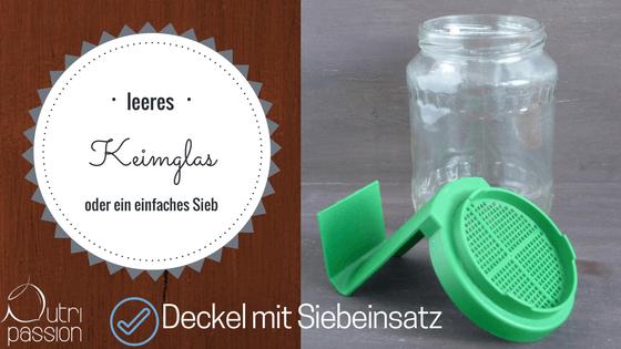 buchweizen-keimen-leeres-keimglas