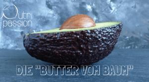 avocado-butter-vom-baum
