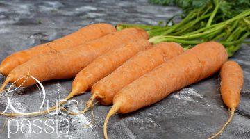 """Karotten – mehr als """"nur"""" Kaninchenfutter"""