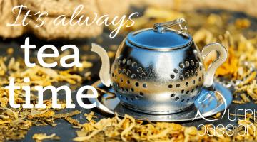 Grüner Tee, schwarzer Tee – wo ist der Unterschied?!