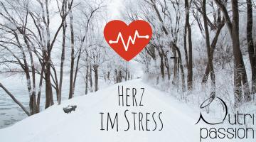 Weihnachtszeit – Herz im Stress