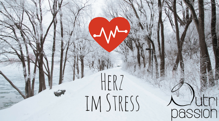 herz-im-stress