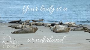 dankbarkeit - body