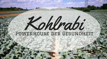 Kohlrabi – ein Powerhaus der Gesundheit