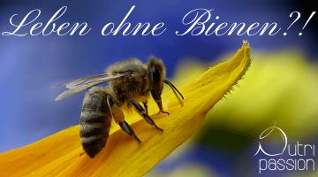Ein Leben ohne Bienen