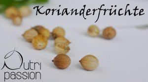 koriander-früchte