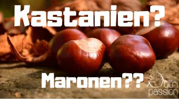 Maronen, Esskastanien – wo ist der Unterschied?