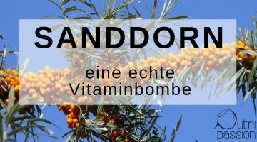 Sanddorn – die Zitrone des Nordens