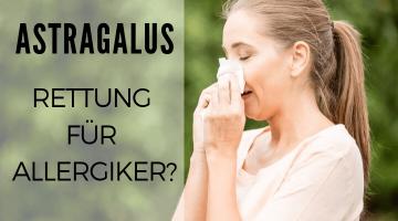 TCM-Pflanze Astragalus: die Rettung für Allergiker?