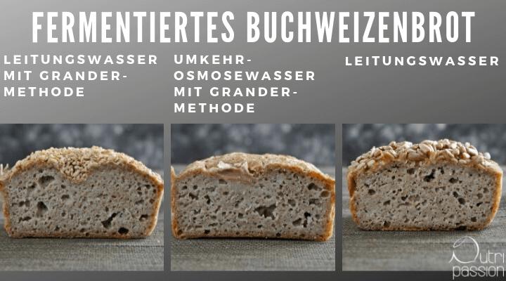 sommelier-brot-fermentiert