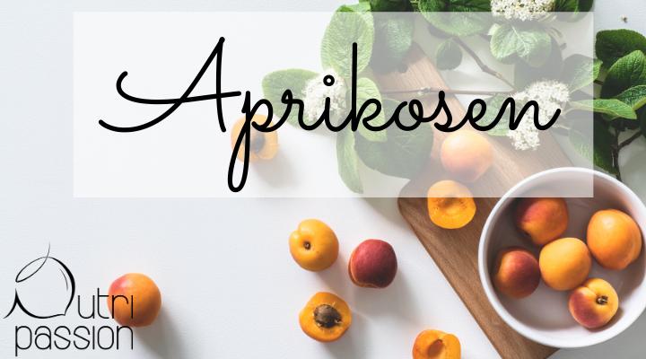 aprikosen-blog